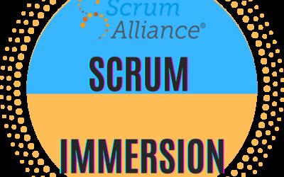 Scrum Immersion Training