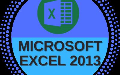 Microsoft Excel 2013- Basic to Advance Level